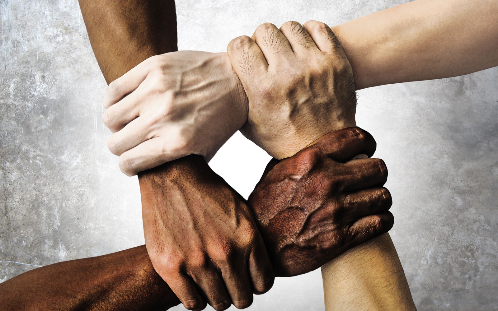 nota igualdade racial
